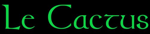 Le Cactus Toulouse